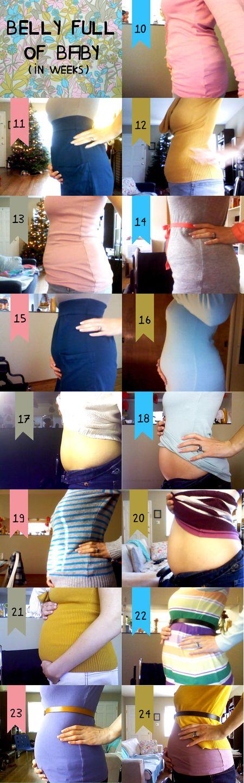 BellyChart 24 weeks