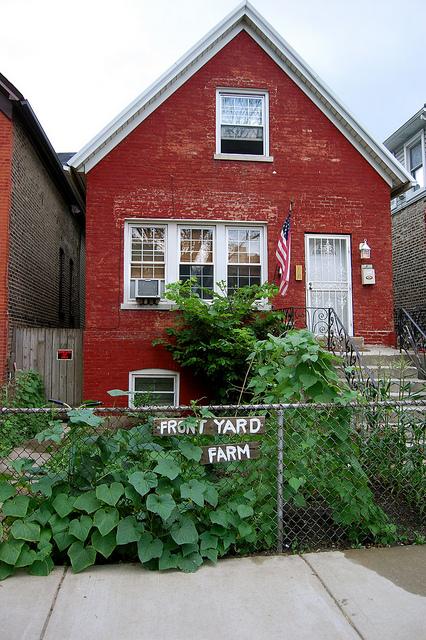 Front Yard Farm - 127